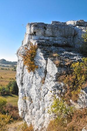 jura: Limestone cliff in Jura Krakowsko-Częstochowska Stock Photo