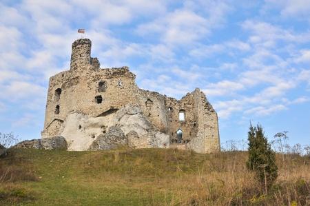 Mirów castle. Poland. Stock Photo - 11871410