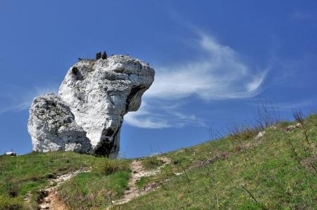 jura: Limestone rock in Jura Krakowsko-Czestochowska- Poland