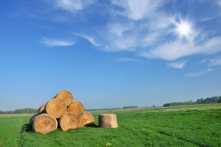 Big haystack on a field in Poland photo