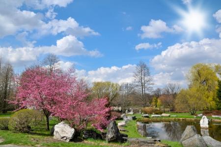 botanic: Spring in Lodz city botanic garden Stock Photo