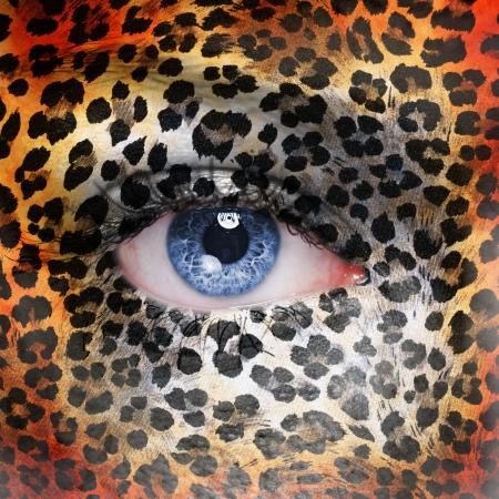 gepard: Cheetah pattern on face