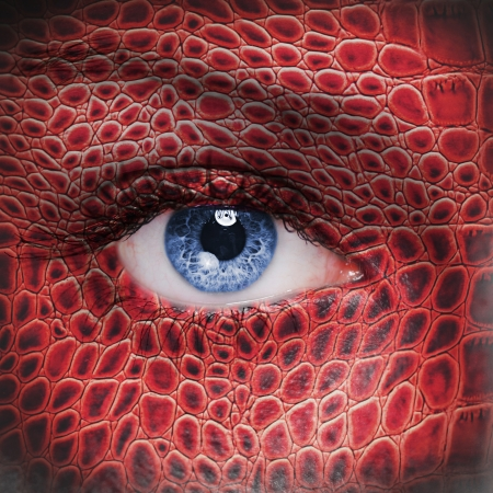 body paint: Red dragon face Stock Photo