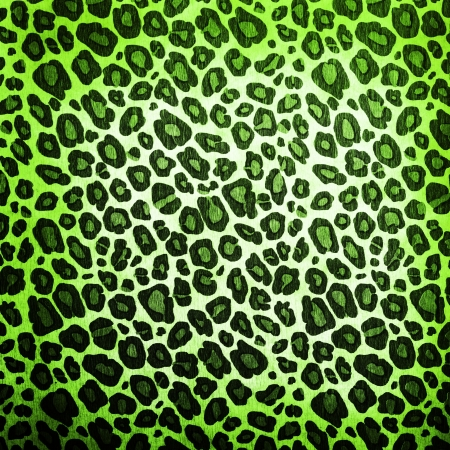 Leopard pattern background or texture close up Stock Photo
