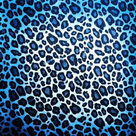 Leopard pattern background or texture close up photo