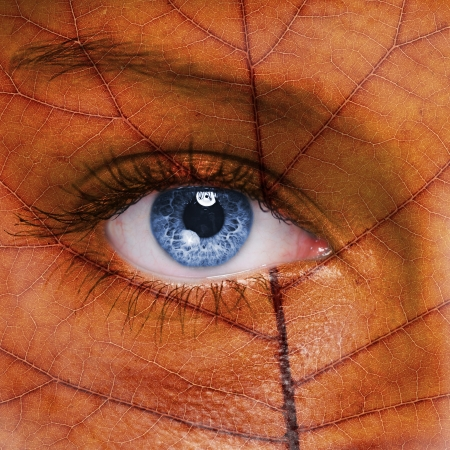 eyes open: Woman face with autumn leaf texture  Stock Photo
