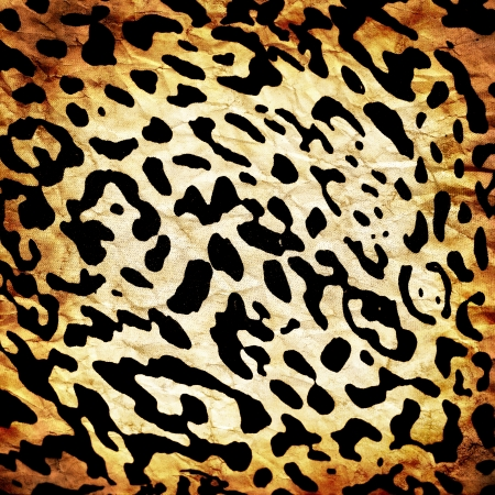 Wild animal skin pattern - material photo