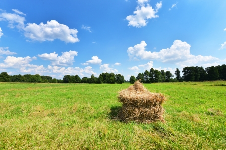 Summer landscape with haystack and blue sky photo