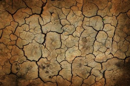 irregular shapes: Fondo de la tierra agrietada o textura. S�mbolo de la sequ�a Foto de archivo
