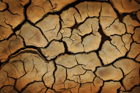 sternly: Cracked earth background or texture. Symbol of drought