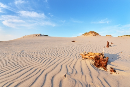 Desert landscape, Slowinski National Park near Leba, Poland photo