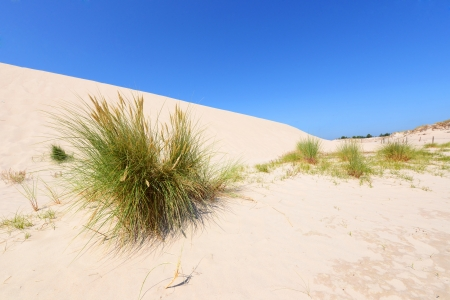 Desert landscape Slowinski National Park Poland Baltic sea photo