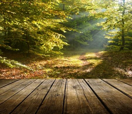 Leere hölzerne Deck Tisch mit Herbstwald Hintergrund. Bereit für die Warenpräsentation montage.