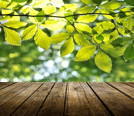 Empty wooden deck table with spring background. Ready for product display montage.  Stock Photo