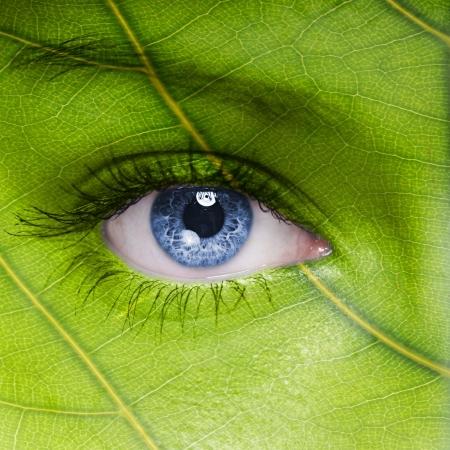 medio ambiente: Cara con textura de la hoja Foto de archivo