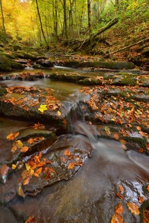Beautiful autumn river photo