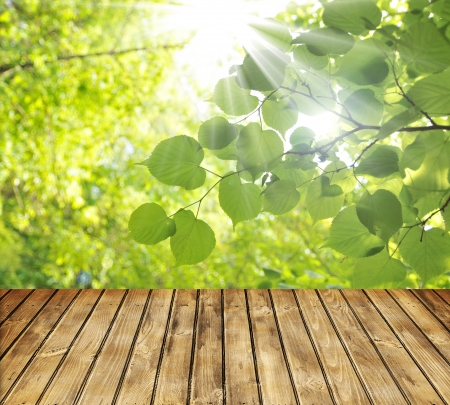 Empty wooden table and green spring leaves in background Stock Photo