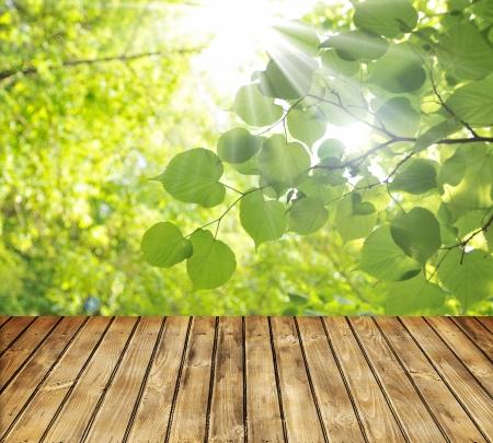 Leere Holztisch und grünen Frühlingsblätter im Hintergrund Lizenzfreie Bilder
