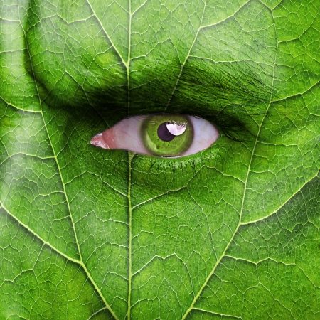 Nature concept - man face covered with leaf texture photo