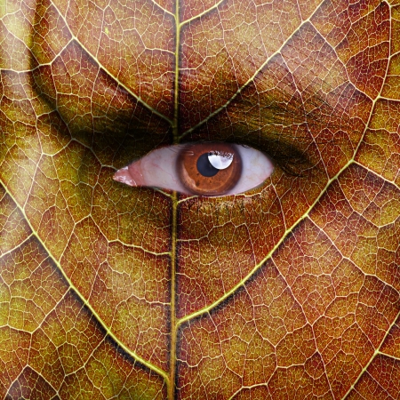 face with autumn leaf texture photo