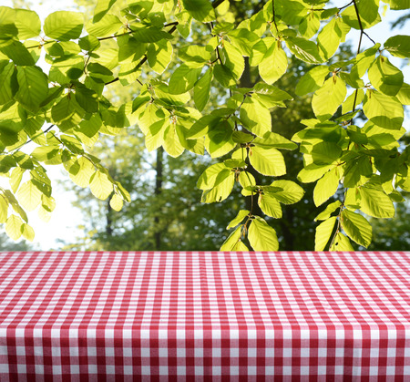 Empty checkered table with spring leaves in background photo