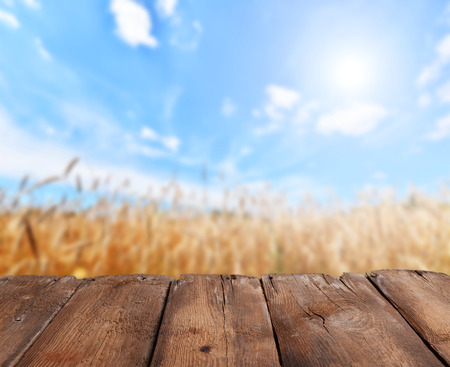 tabletop: Empty wooden deck table with rye field in background