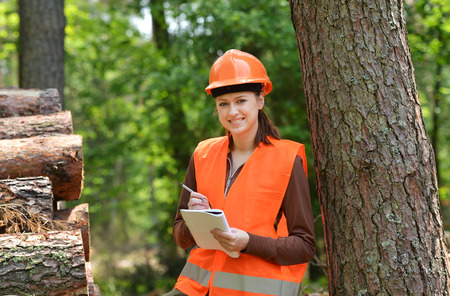 Young and beautiful forestry engineer at work photo