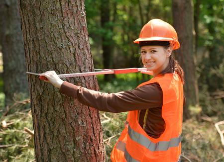 Ingeniero joven y hermosa en el trabajo forestal