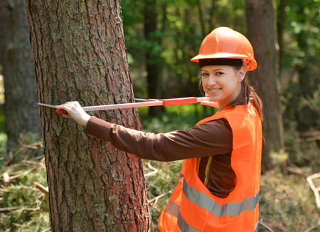 Young and beautiful forestry engineer at work