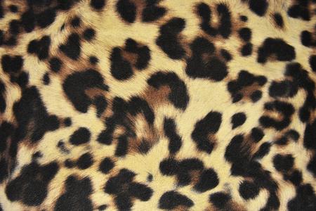 gepard: Wild animal skin pattern - material