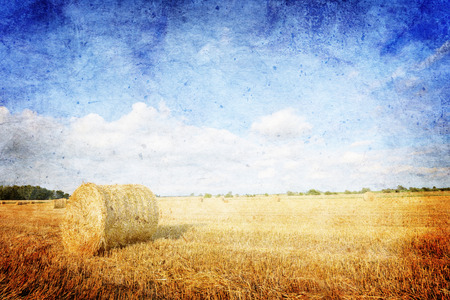 hay bales: Hay bales on the field after harvest, Poland - vintage style