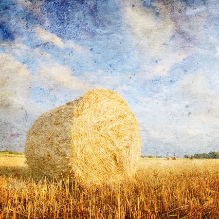 hay bales: Hay bales on the field after harvest, Poland- vintage version Stock Photo