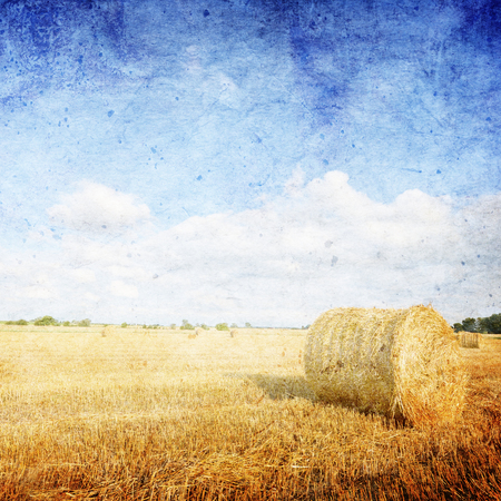 hay field: Hay bales on the field after harvest, Poland - vintage style