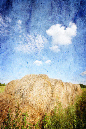 hay bales: Beautiful summer landscape with hay bales and blue sky - Poland - Vintage version