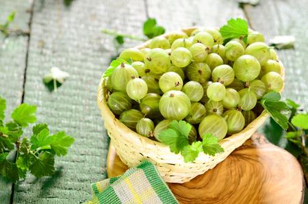 gooseberries: Basket of fresh gooseberries