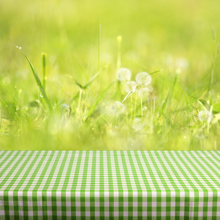 Spring background ready for your display montages Stock Photo