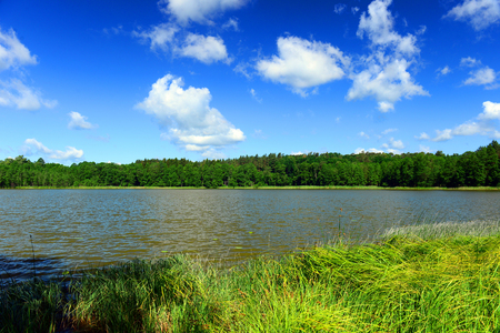 view of the lakes shore in Masuria District, Poland Stock Photo