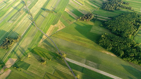 Green fields and road aerial view Stock Photo