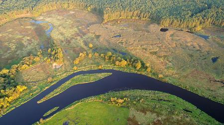 Aerial view of natural river