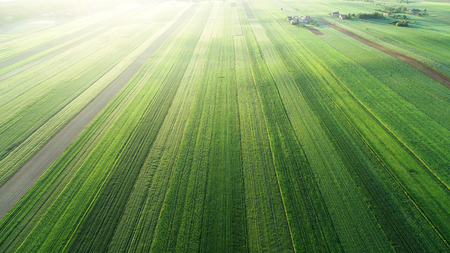 Aerial landscape - spring fields Stock Photo