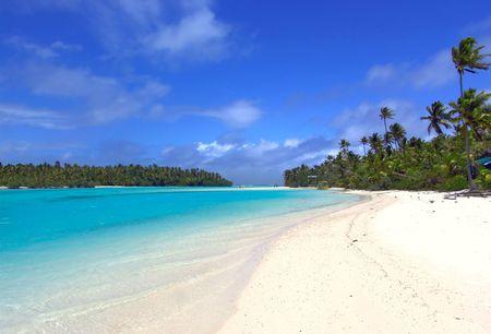 bask: Lagoon, Sand and Palms Stock Photo
