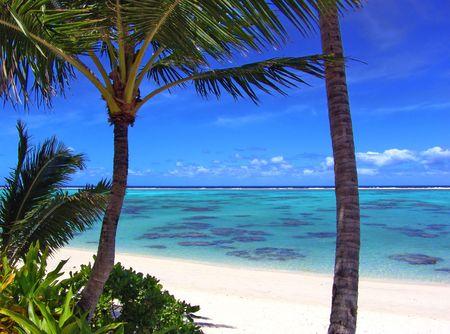Beautiful Turquoise Lagoon in Rarotonga Stock Photo - 208554