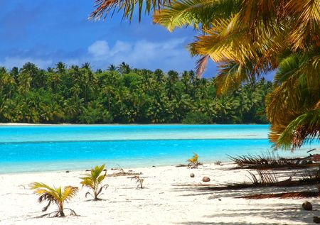 Tropical Beach in the Cook Islands photo