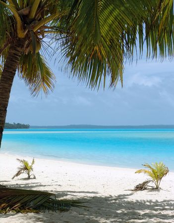 Tropical Beach in the Cook Islands Stock Photo - 208546