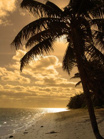 Yellow Sunset Silhouette