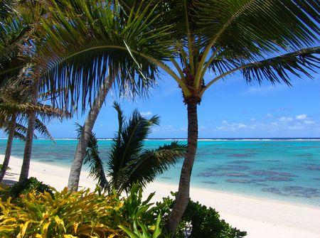 A deserted tropical beach photo