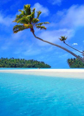 palm beach: Stunning Lagoon Stock Photo