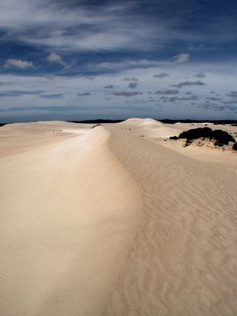 Looking along a tall sand dune