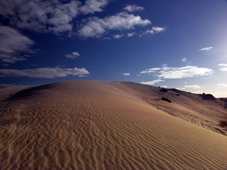 dehydrate: Sand Dune Landscape