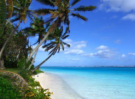 Tropical Scenic Stock Photo